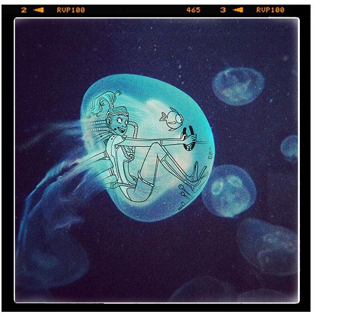 Meduse 2014 bd